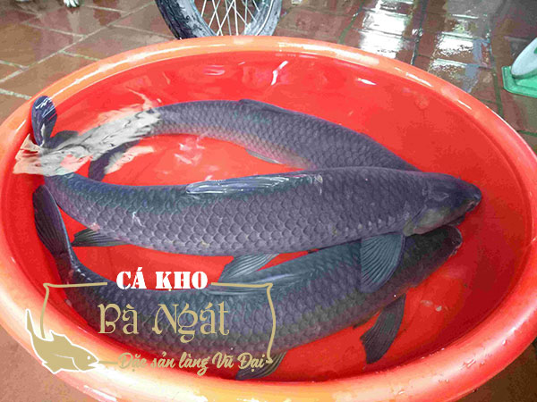 Cá Trắm Đen kho làng Vũ Đại